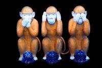 monkey1111.jpg