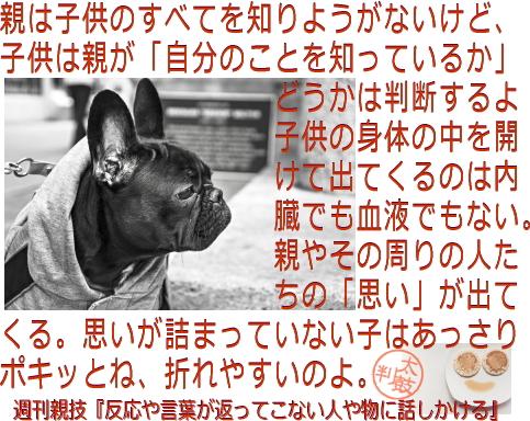 oyawaza369.jpg