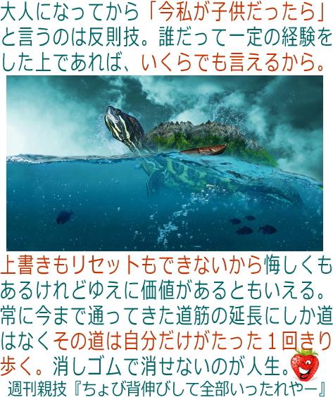 oyawaza374.jpg